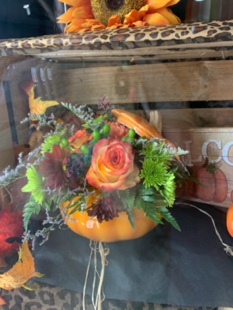 Pumpkin arrangement  Fall