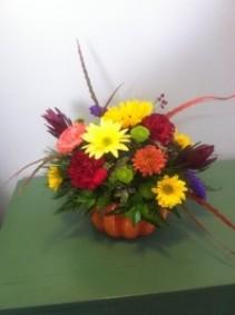 Pumpkin Blessings Floral
