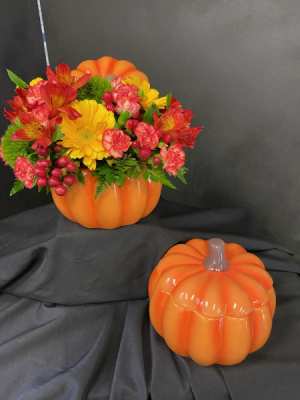 Pumpkin Blossoms  in Memphis, TN   PIANO'S FLOWERS & GIFTS, INC.