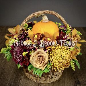 PUMPKIN CHARMER  in Brattleboro, VT   George J. Brooks Florist LLC