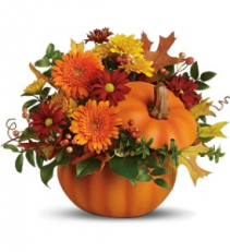 Pumpkin Delight Fresh Arrangment