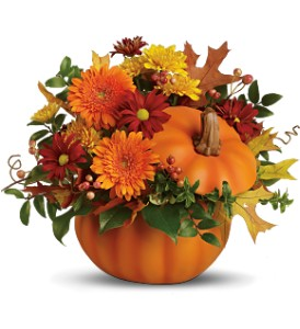 F100 - Pumpkin Delight Fresh Arrangment in Cherokee, IA | Blooming House
