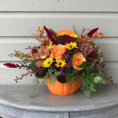 Pumpkin Delight Pumpkin Pot Arrangement