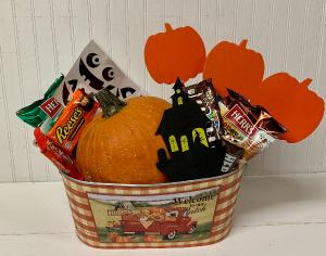 Pumpkin Fun Kit  in Easton, MD | ROBINS NEST FLORAL AND GARDEN CENTER
