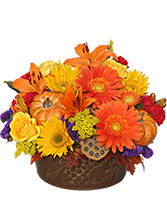 Pumpkin Gathering Autumn Arrangement in Bridgeport, Connecticut | Blossoming Blessings Florist