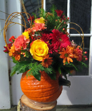 Pumpkin Harvest Arrangement in North Adams, MA | MOUNT WILLIAMS GREENHOUSES INC