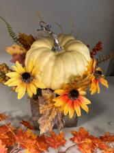 Pumpkin in a box Everlasting Decor