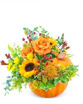 Pumpkin in Radiance Flower Arrangement