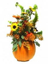 PUMPKIN LIFE Heart to Heart Arrangement