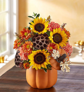 Pumpkin N' Posies 1-800 Flowers Bouquet