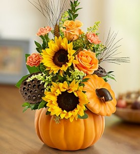 PUMPKIN N' POSIES GFFG Arrangement in Greers Ferry, AR | GREERS FERRY FLORIST & GIFTS
