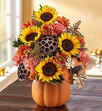 Pumpkin n' Posies From Roma Florist And Grinhouse