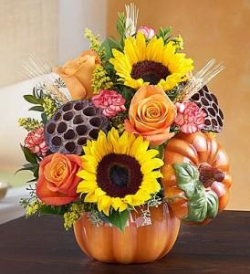 Pumpkin n' Posies™ Thanksgiving