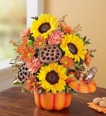 Pumpkin N' Posies Woodland Pumpkin Arrangement