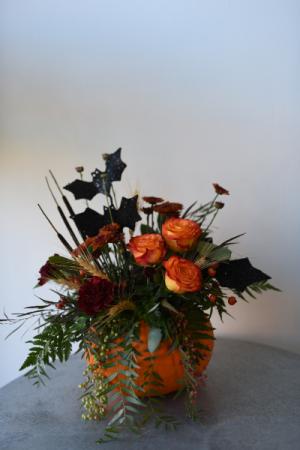 Pumpkin Palooza  in La Grande, OR | FITZGERALD FLOWERS