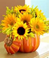 Pumpkin Patch Ceramic Pumpkin keepsake filled with Sunflowers