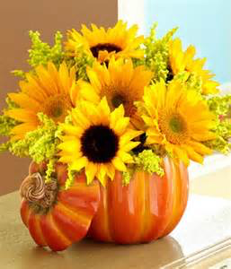 Pumpkin Patch Ceramic Pumpkin keepsake filled with Sunflowers in Colorado Springs, CO | ENCHANTED FLORIST II