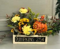 Pumpkin Patch  Chalkboard Box Arrangement