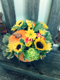 Pumpkin Patch  Fresh Fall Arrangement