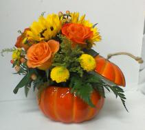 Pumpkin Patch Mixed fall flowers