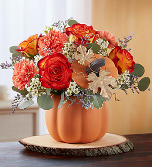 Pumpkin Petals 1-800 flowers bouquet in Saint Louis, MO | SOUTHERN FLORAL SHOP