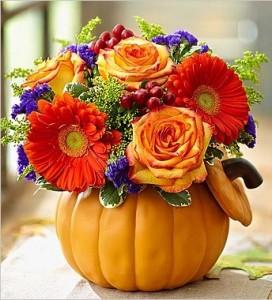 Pumpkin Petals