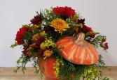 Pumpkin Pop Arrangement Fresh arrangment