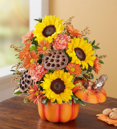 Pumpkin & Posies Fall