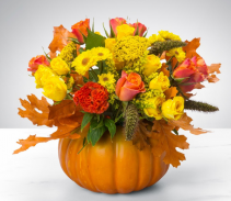 Pumpkin Power  Arrangement