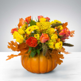 Pumpkin Power  Floral arrangement
