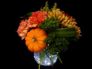 Pumpkin Spice  in New Canaan, CT | BON FLEUR