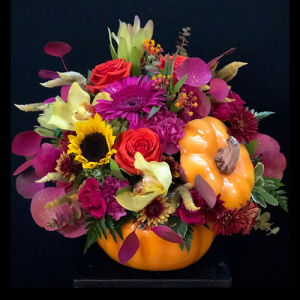Pumpkin Spice  Ceramic Pumpkin in Chesterfield, MO | ZENGEL FLOWERS AND GIFTS