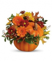Pumpkin Spice Floral Fall Arrangement in decorative pumpkin keepsake