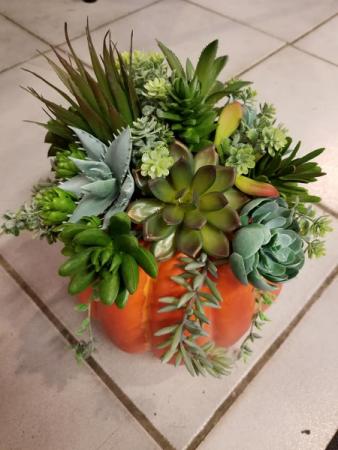 Pumpkin Succulent arrangement Artificial