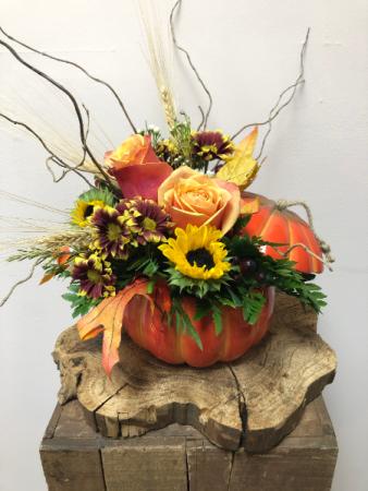 Pumpkin Thyme Fall Arrangement