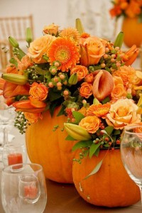 Pumpkins with Fresh flowers  Thanks Giving Special
