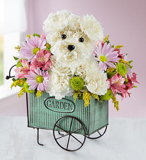 Pup N' Posies™  in Valley City, OH | HILL HAVEN FLORIST & GREENHOUSE