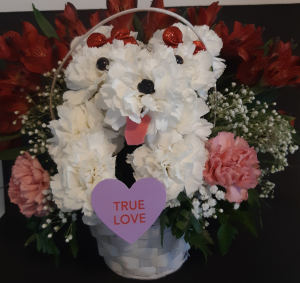 Puppy Love Basket in Raynham, MA | FLORALS FROM THE HEART