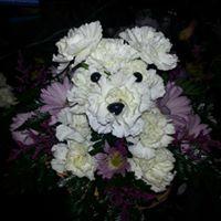 Puppy Love Basket arrangement