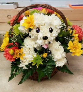Puppy Love Basket Wicker Basket in Barre, VT | Forget Me Not Flowers and Gifts LLC
