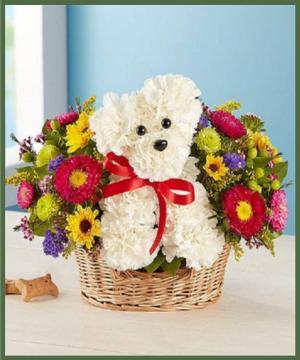 Puppy Love Best Seller! in Arlington, TX | Erinn's Creations Florist