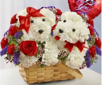 Puppy Love Carnations