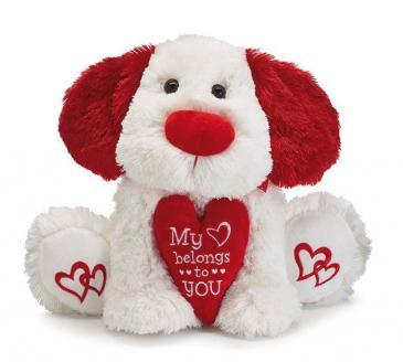 Puppy Love Plush Gift