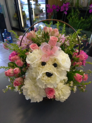 Puppy Love  in Sunrise, FL | FLORIST24HRS.COM