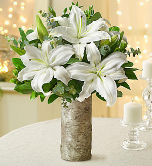 Pure and Simple  in Sunrise, FL | FLORIST24HRS.COM