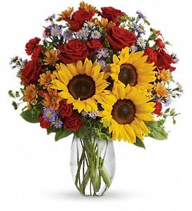 Pure Happiness Vase Arrangement in Elkton, MD | FAIR HILL FLORIST