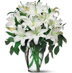Pure Joy Casa Blanca Lily Arrangement in Greers Ferry, AR | GREERS FERRY FLORIST & GIFTS