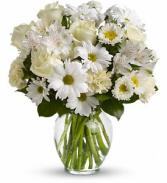 Purest Intention - 565 Vase Arrangement