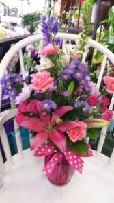 Purple and Pink Splendor