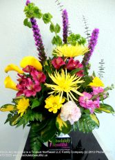 Purple and Yellow Passion Blooms into Spring Exclusive Beyond The Ordinary